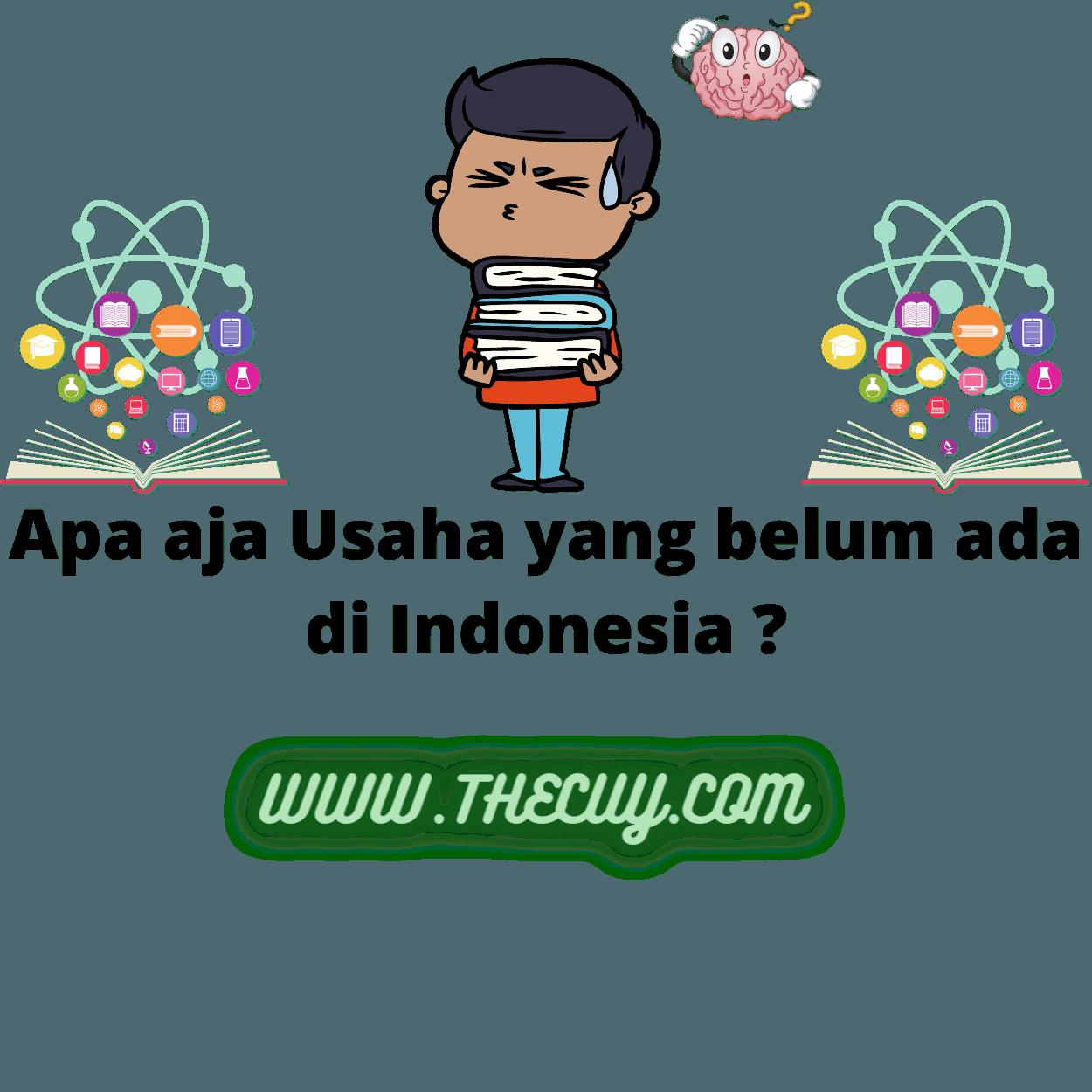 usaha yang belum ada di Indonesia