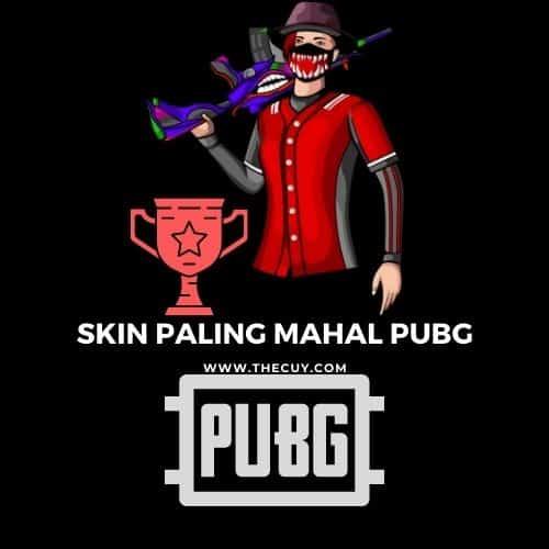 Skin Paling mahal PUBG