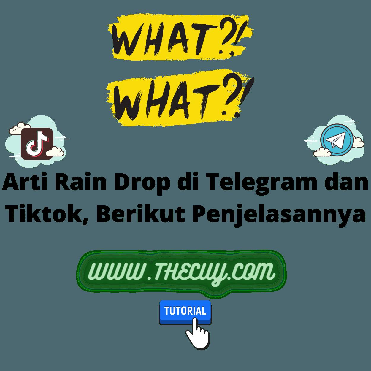 Arti Rain Drop di Telegram dan Tiktok, Berikut Penjelasannya