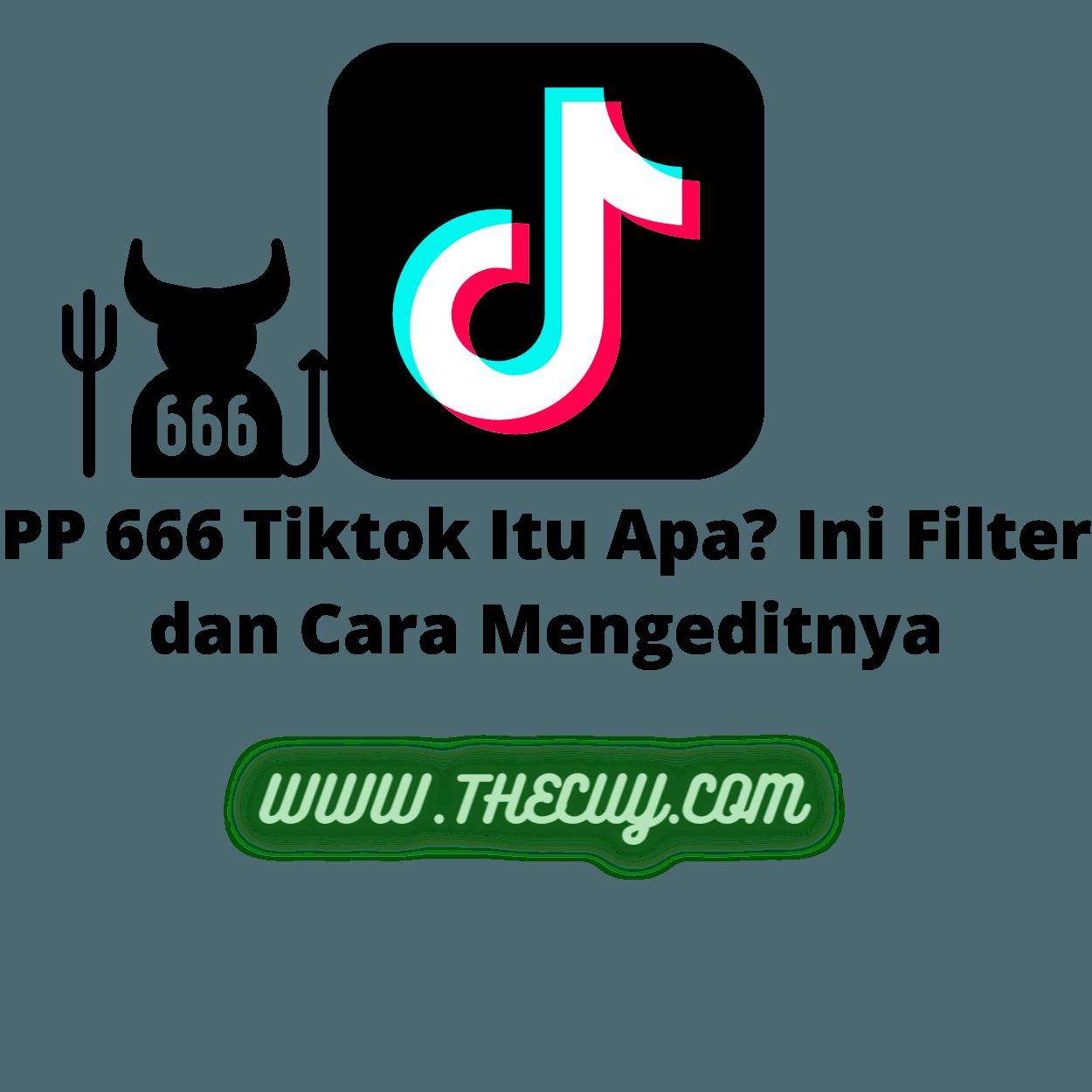 PP 666 Tiktok Itu Apa? Ini Filter dan Cara Mengeditnya