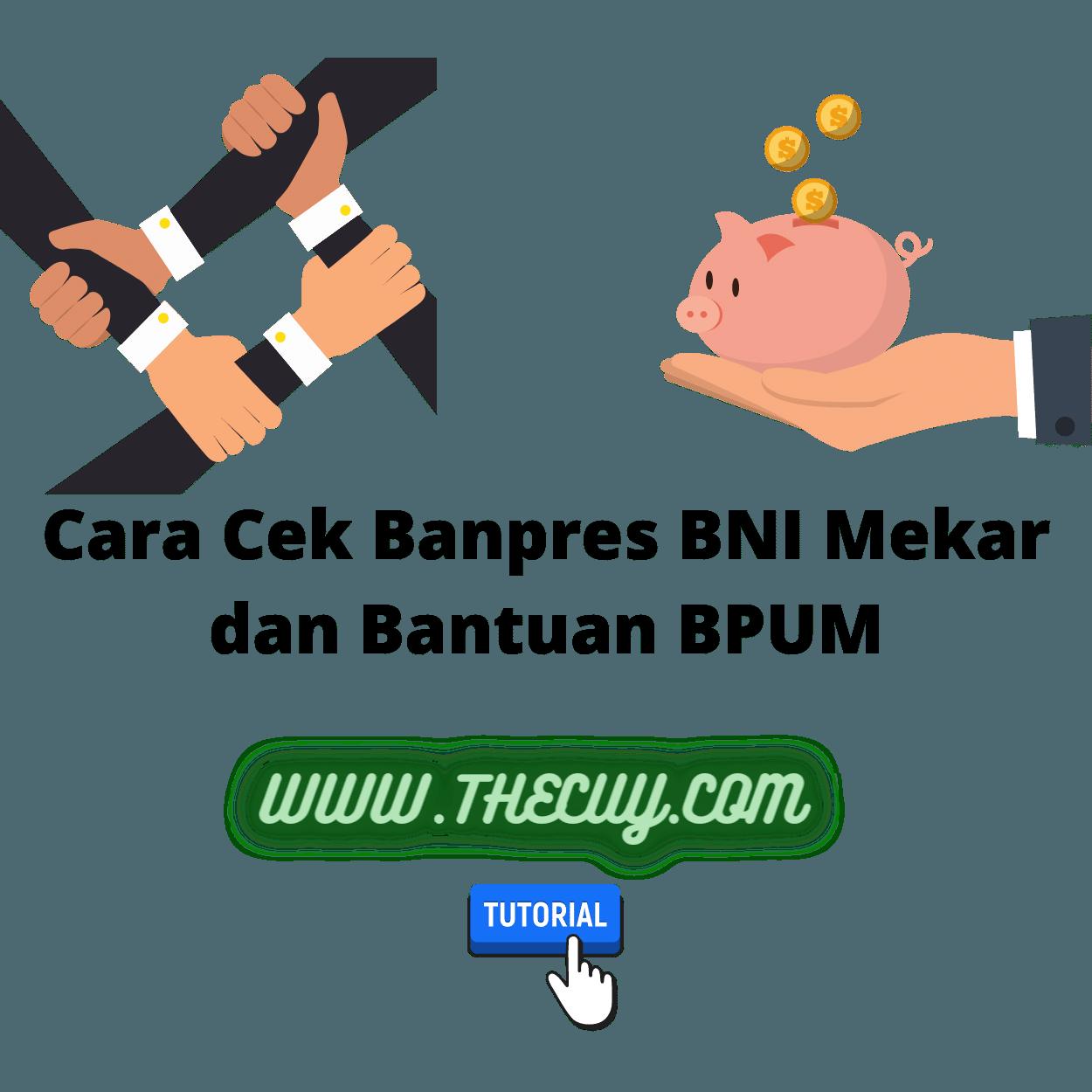 Cara Cek Banpres BNI Mekar dan Bantuan BPUM