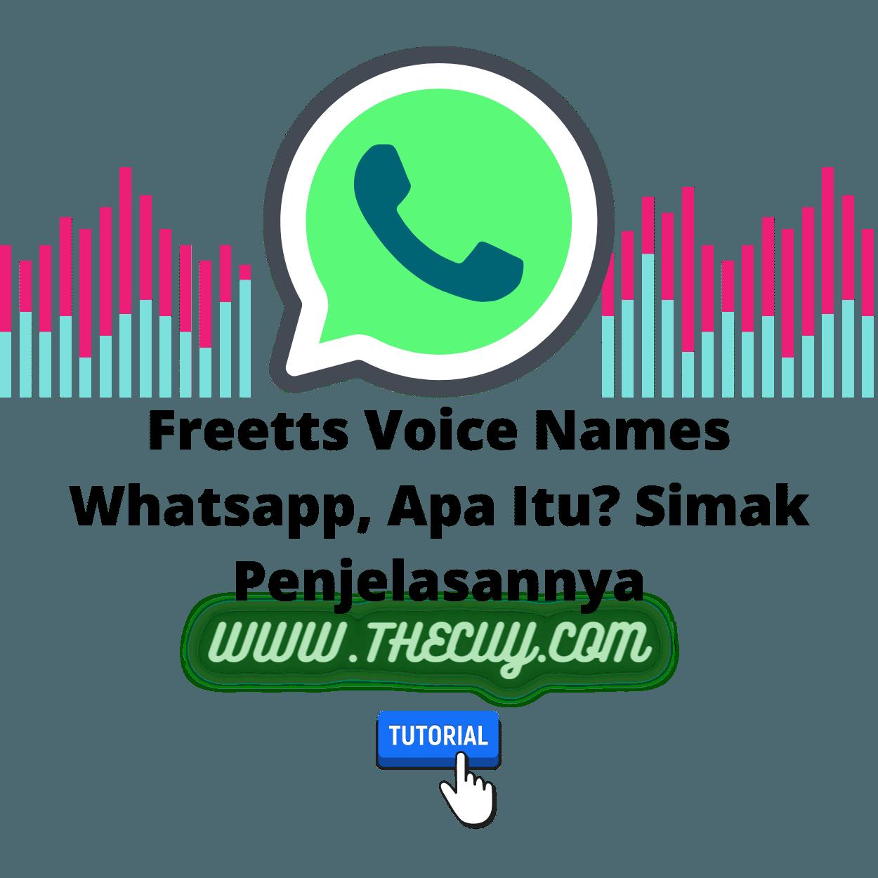 Freetts Voice Names Whatsapp, Apa Itu? Simak Penjelasannya