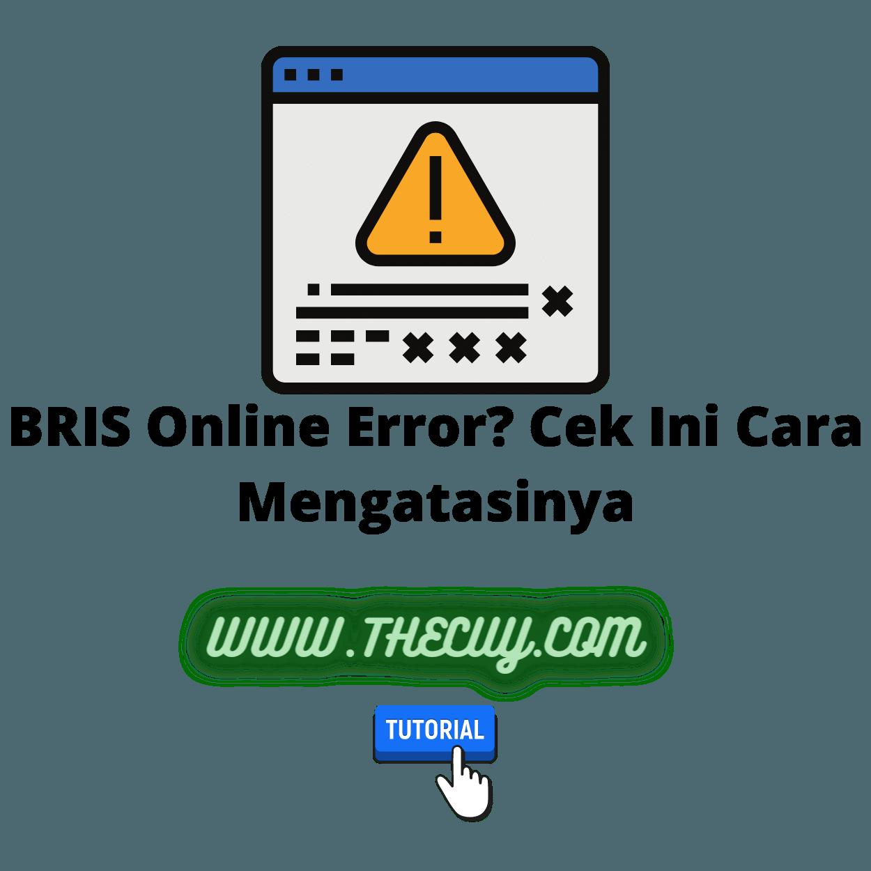 BRIS Online Error? Cek Ini Cara Mengatasinya