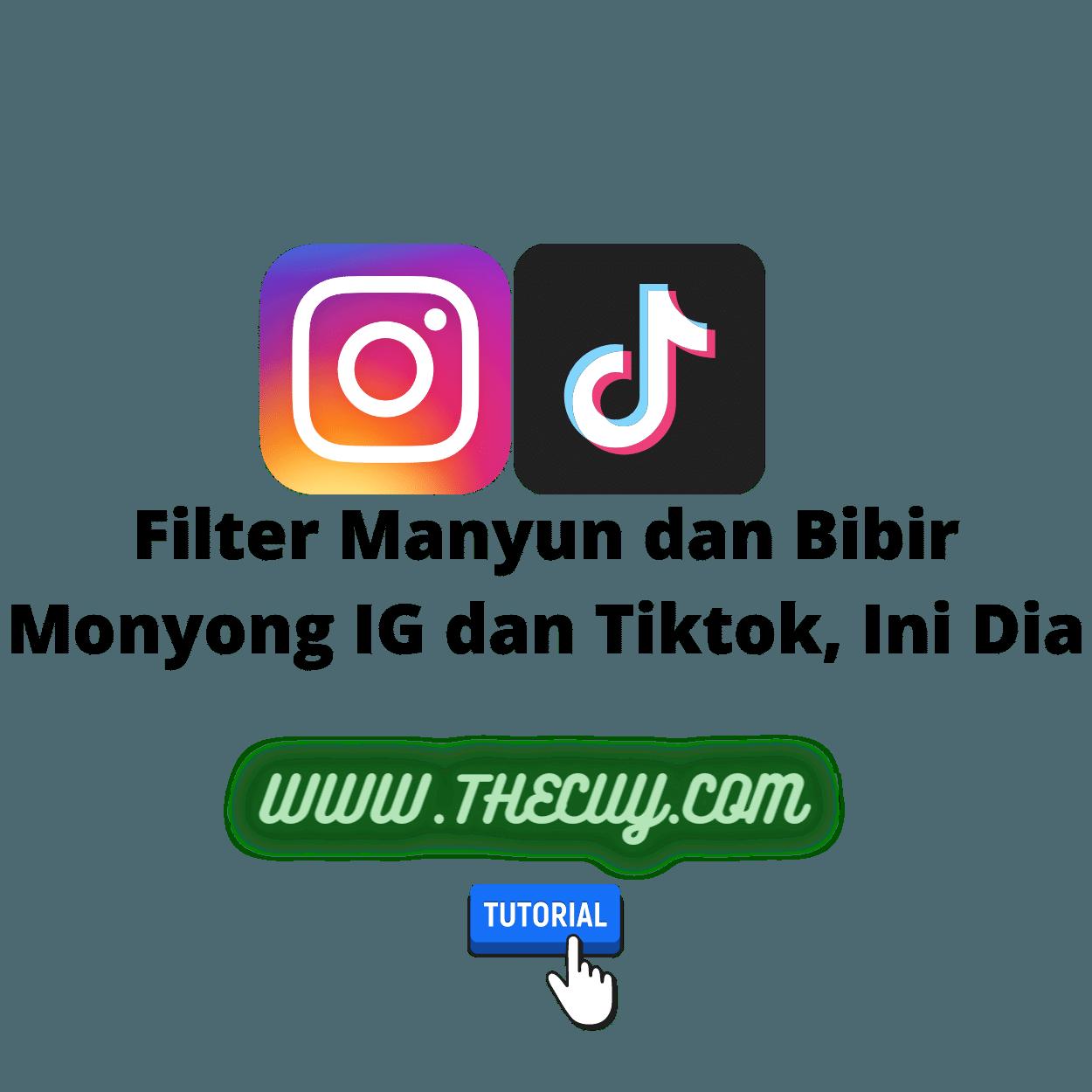Filter Manyun dan Bibir Monyong IG dan Tiktok, Ini Dia