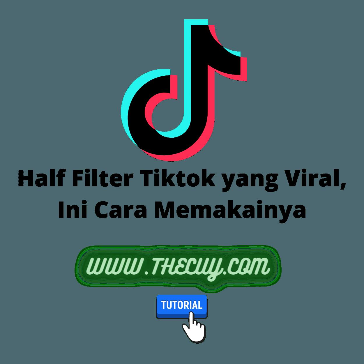 Half Filter Tiktok yang Viral, Ini Cara Memakainya