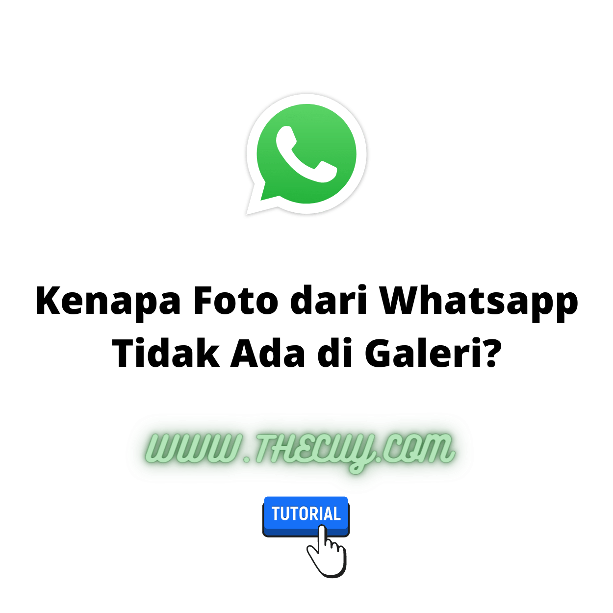 Kenapa Foto dari Whatsapp Tidak Ada di Galeri?