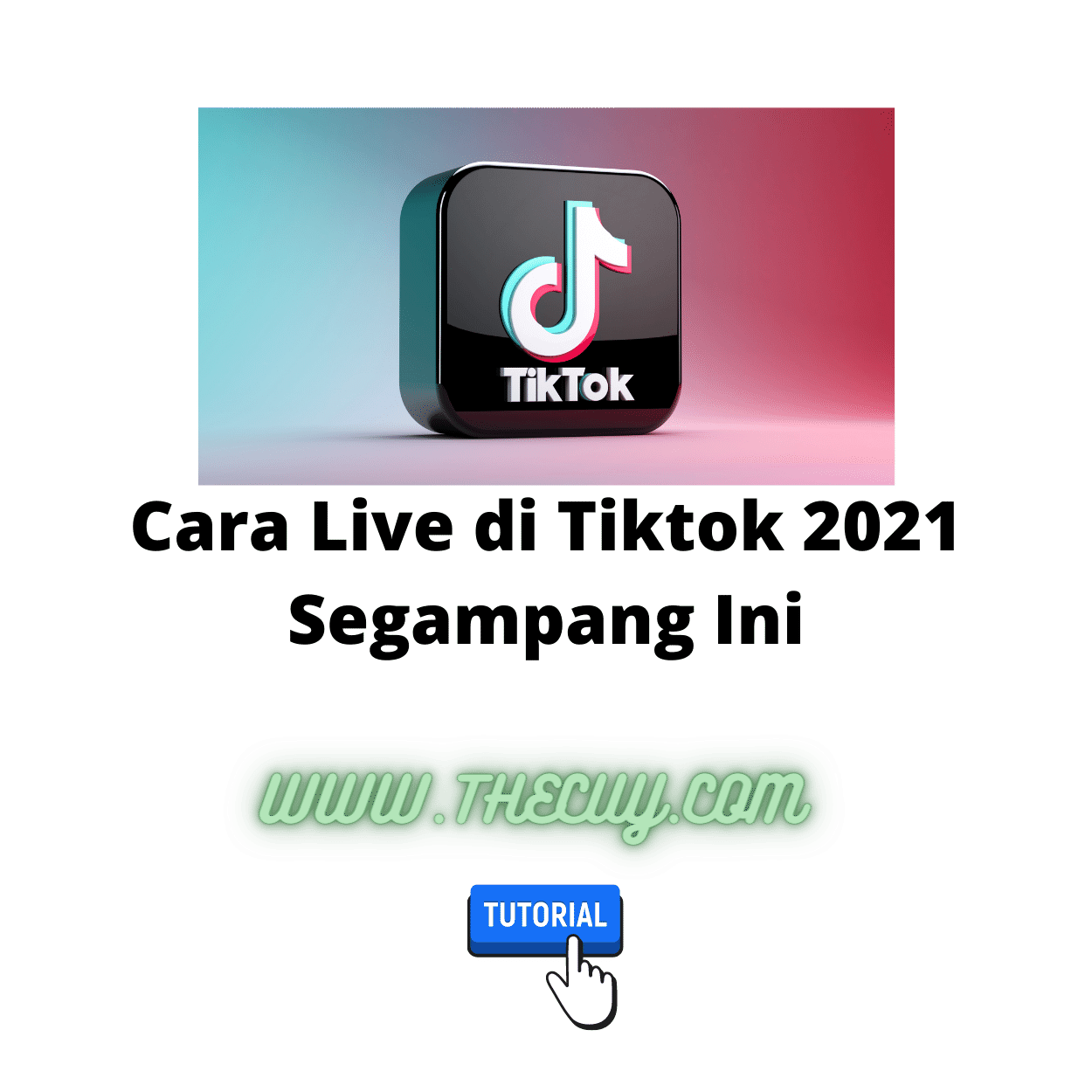 Cara Live di Tiktok 2021 Segampang Ini