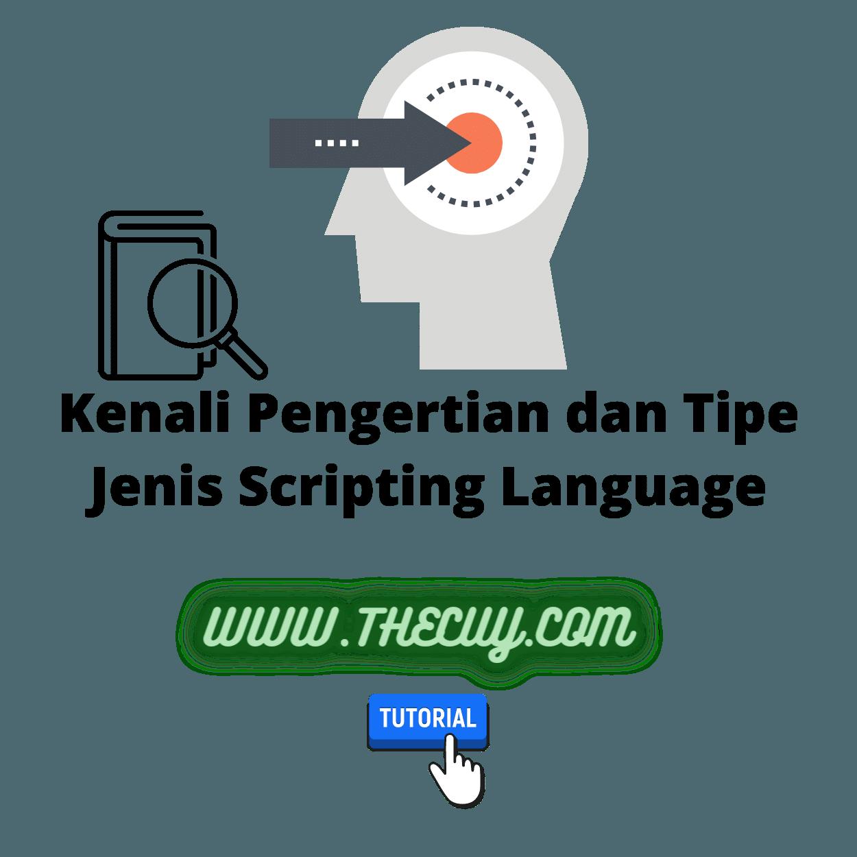 Kenali Pengertian dan Tipe Jenis Scripting Language