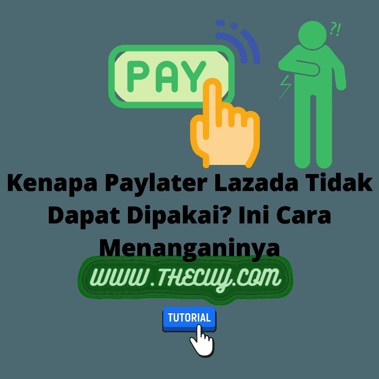 Kenapa Paylater Lazada Tidak Dapat Dipakai? Ini Cara Menanganinya
